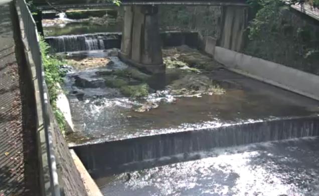 有馬川公園橋ライブカメラは、兵庫県神戸市北区の公園橋に設置された有馬川が見えるライブカメラです。