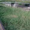 山田川亀ヶ坪橋ライブカメラ(兵庫県神戸市垂水区)