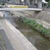 住吉川五百崎橋ライブカメラ(兵庫県神戸市東灘区)