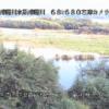 球磨川一武ライブカメラ(熊本県錦町木上)