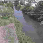 天明新川補給水橋ライブカメラ(熊本県熊本市南区)