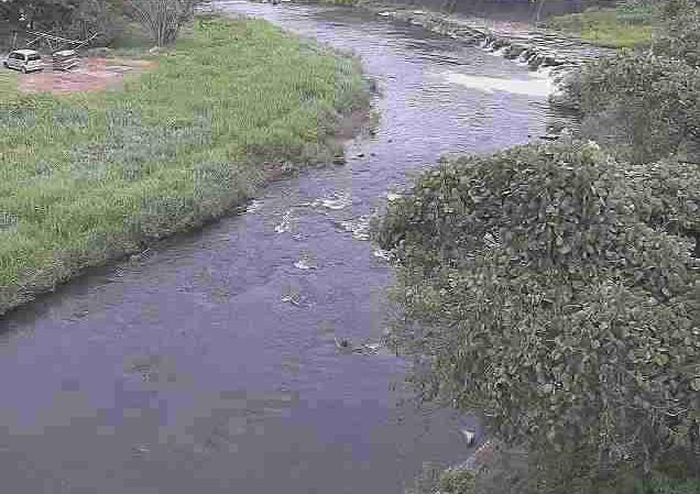 筑後川志賀瀬川合流点ライブカメラは、熊本県小国町宮原の志賀瀬川合流点(阿蘇広域行政事務組合消防本部北部分署付近)に設置された筑後川が見えるライブカメラです。
