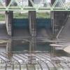 狩野川鏡橋ライブカメラ(静岡県伊豆の国市墹之上)