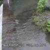 菅引川菅引第3砂防ダムライブカメラ(静岡県伊豆市菅引)
