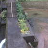 狩野川猫越第4砂防ダムライブカメラ(静岡県伊豆市湯ケ島)