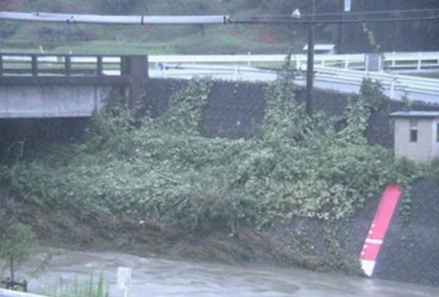 土岐川新大島橋ライブカメラは、岐阜県瑞浪市釜戸町の竜吟幼児園園舎に設置された土岐川・釜戸水位観測所が見えるライブカメラです。