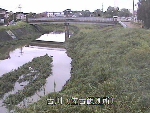 古川佐古水位観測所ライブカメラは、京都府久御山町佐古の佐古水位観測所(佐古観測所)に設置された古川が見えるライブカメラです。