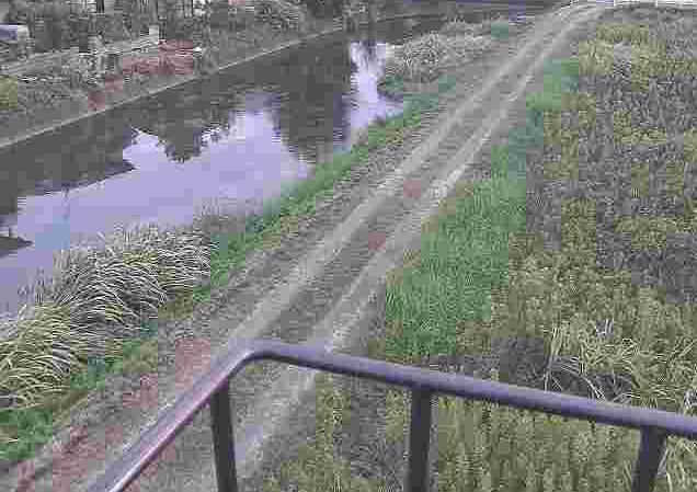 流藻川流藻川五号橋ライブカメラは、熊本県八代市植柳下町の流藻川五号橋(流藻川5号橋)に設置された流藻川が見えるライブカメラです。