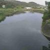 水俣川古城ライブカメラ(熊本県水俣市古城)