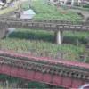 山田川染戸橋ライブカメラ(熊本県人吉市鶴田町)