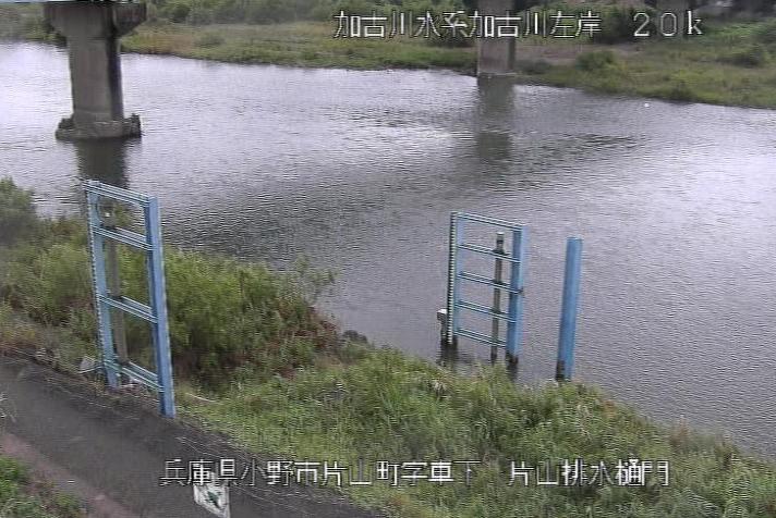 加古川大島ライブカメラは、兵庫県小野市片山町の片山排水樋門に設置された加古川が見えるライブカメラです。