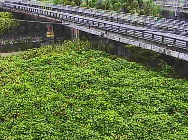 日野川桐原橋ライブカメラは、滋賀県近江八幡市安養寺町の桐原橋(桐原橋水位観測局)に設置された日野川が見えるライブカメラです。