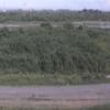 天竜川安間川合流点ライブカメラ(静岡県浜松市南区)