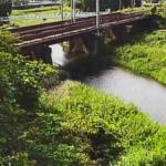 芹川上芹橋ライブカメラ(滋賀県彦根市芹町)