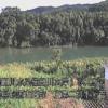 櫛田川庄第二排水樋管ライブカメラ(三重県松阪市庄町)