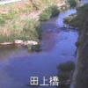 新川田上橋ライブカメラ(鹿児島県鹿児島市田上)
