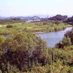 大瀬川三須樋管ライブカメラ(宮崎県延岡市三須町)