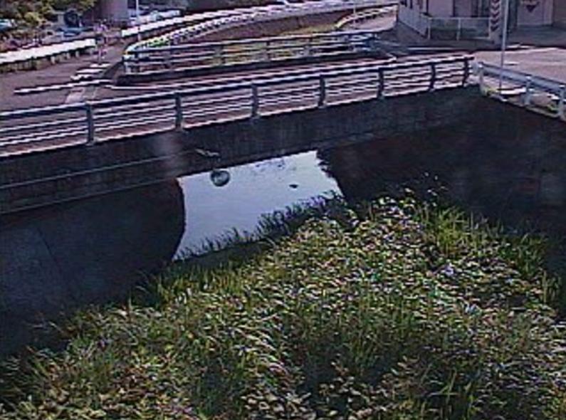 小松川小松川放水路ライブカメラ(宮崎県宮崎市祇園町)