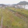 宇治川中山橋ライブカメラ(高知県いの町枝川)