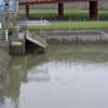 六角川芦刈第一排水機場ライブカメラ(佐賀県小城市芦刈町)