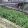 晴気川三岳寺橋ライブカメラ(佐賀県小城市小城町)