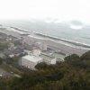 白菊園裏山ライブカメラ(高知県土佐市新居)