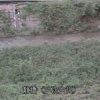 戸次古川静橋ライブカメラ(大分県大分市下戸次)