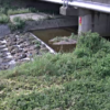 明石川藤原橋ライブカメラ(兵庫県神戸市西区)