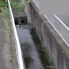 天神川沈砂池ライブカメラ(兵庫県神戸市東灘区)