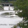 狩野川珍野ライブカメラ(静岡県伊豆の国市南江間)