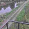 流藻川流藻川五号橋ライブカメラ(熊本県八代市植柳下町)