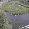 胸川間橋ライブカメラ(熊本県人吉市西間上町)