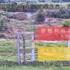 由良川福知山水位観測所ライブカメラ(京都府福知山市寺)