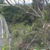 新町大橋ライブカメラ(福島県大熊町熊)