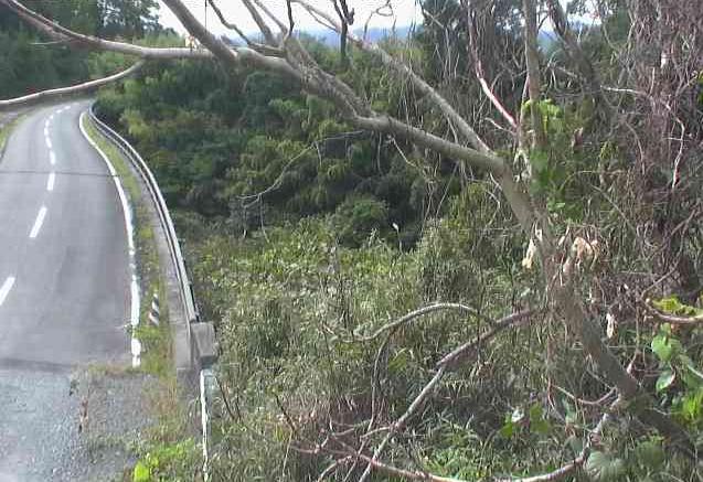 新町大橋ライブカメラは、福島県大熊町熊の新町大橋に設置された大熊町道・新町大橋周辺が見えるライブカメラです。
