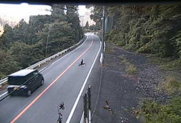 国道462号鬼石ライブカメラは、群馬県藤岡市譲原の鬼石に設置された国道462号(十石峠街道)が見えるライブカメラです。