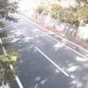 群馬県道64号平川横塚線花咲ライブカメラ(群馬県片品村花咲)
