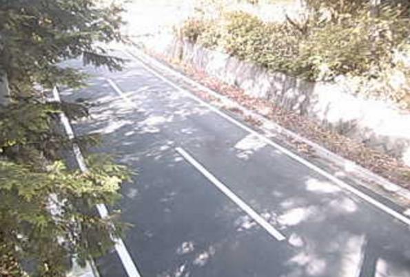 群馬県道64号平川横塚線花咲ライブカメラは、群馬県片品村花咲の花咲に設置された群馬県道64号平川横塚線(奥利根ゆけむり街道)が見えるライブカメラです。