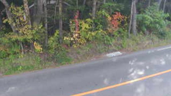 国道146号北軽井沢交差点付近ライブカメラは、群馬県長野原町軽井沢の北軽井沢交差点付近(群馬県道235号大笹北軽井沢線・群馬県道54号長野原倉渕線)に設置された国道146号が見えるライブカメラです。