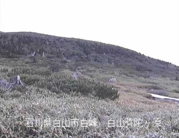 手取川弥陀ヶ原ライブカメラは、石川県白山市白峰の弥陀ヶ原に設置された手取川が見えるライブカメラです。