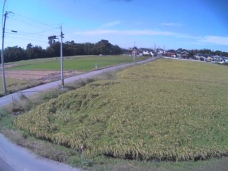 KATCH安城市道四十目三ツ訳線ライブカメラは、愛知県安城市柿碕町の◯に設置された安城市道四十目三ツ訳線が見えるライブカメラです。
