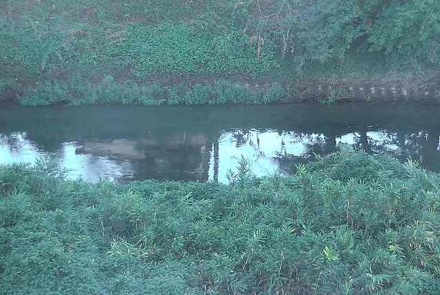 五条川中流付近ライブカメラは、愛知県北名古屋市薬師寺の中流付近に設置された五条川が見えるライブカメラです。
