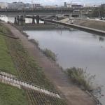 新川新川大橋ライブカメラ(愛知県清須市西枇杷島町)