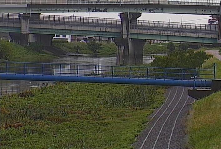 五条川野田ライブカメラは、愛知県清須市春日の野田に設置された五条川が見えるライブカメラです。