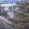 高万迫ライブカメラ(福島県双葉町新山)