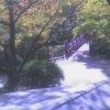 弥彦公園もみじ谷観月橋ライブカメラ(新潟県弥彦村弥彦)