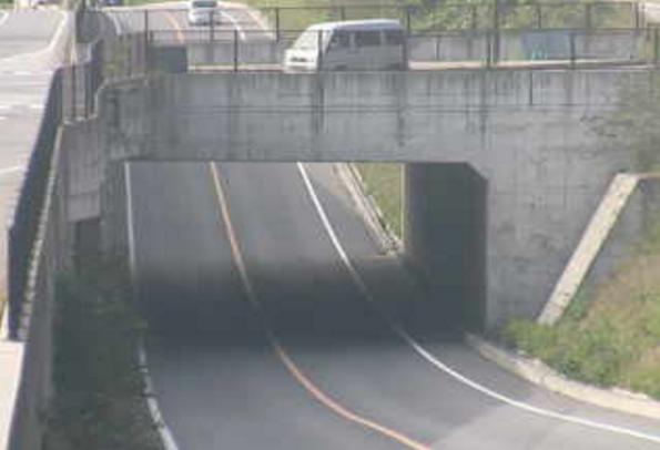 国道145号林アンダーライブカメラは、群馬県長野原町林の林アンダーに設置された国道145号(八ッ場バイパス)が見えるライブカメラです。
