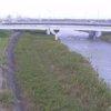 法勝寺川福市観測所ライブカメラ(鳥取県米子市兼久)