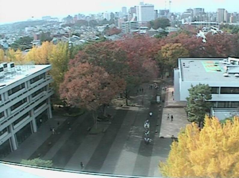 東京経済大学国分寺キャンパスライブカメラ(東京都国分寺市南町)