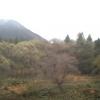 かぐらホワイトホースインみつまたライブカメラ(新潟県湯沢町三俣)
